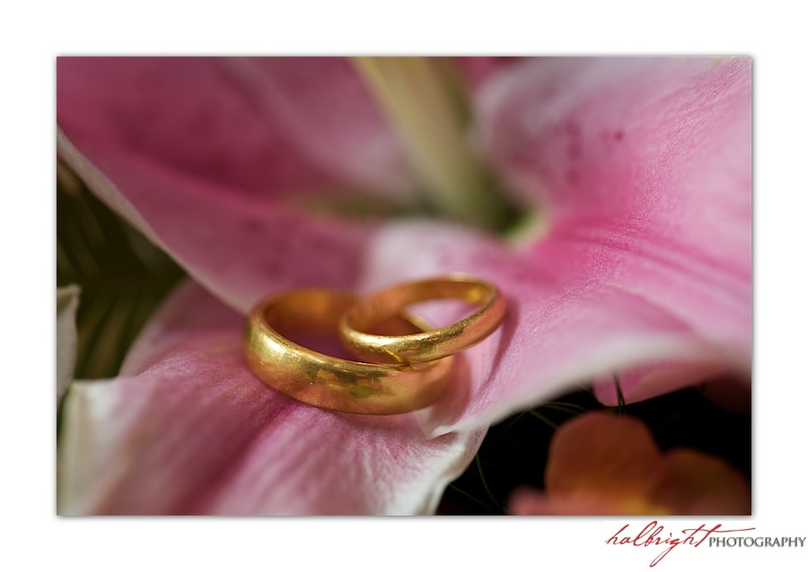 golden Wedding Bands on Lilac Flower - Wedding Rings - Ring shot